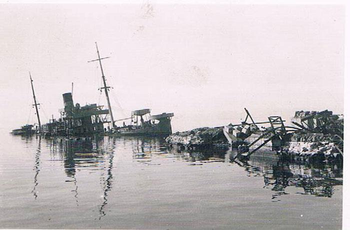 Атлас иглокожих и асцидий дальневосточных морей России.